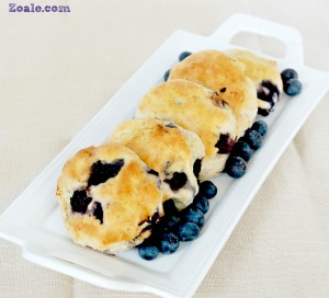 blueberry biscuits 2nd - 1R