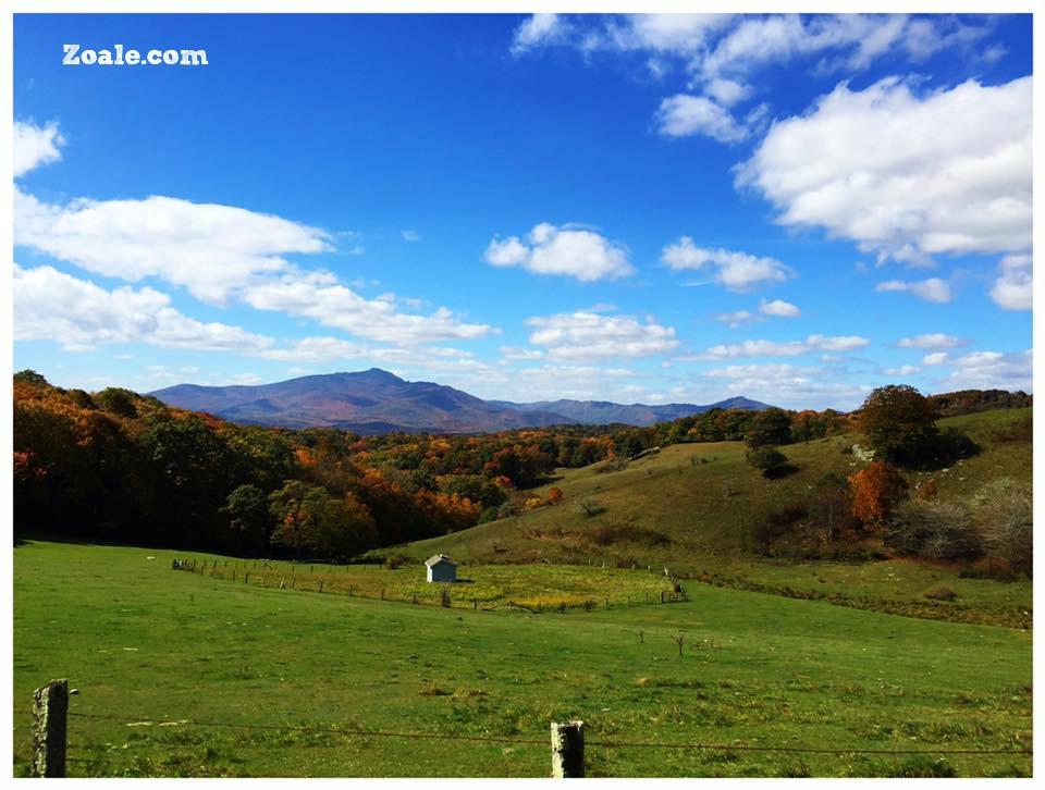 fall-pics-2