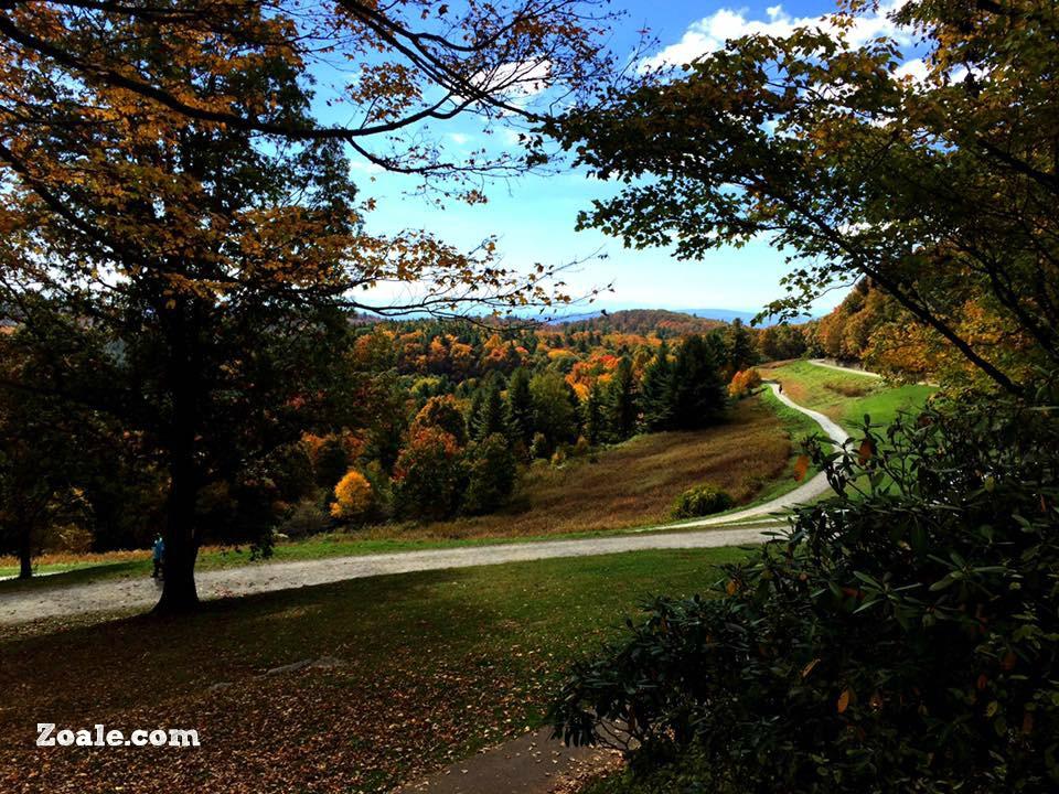fall-pics-3